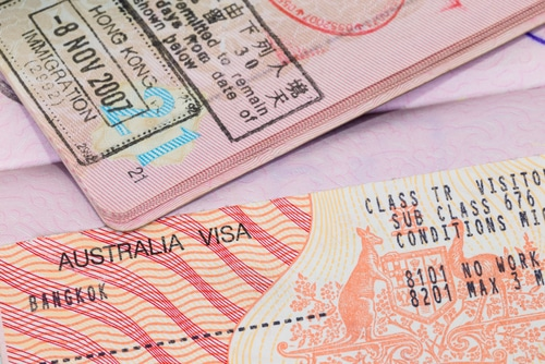 Can I apply for a visitor visa during the processing of my partner visa application?